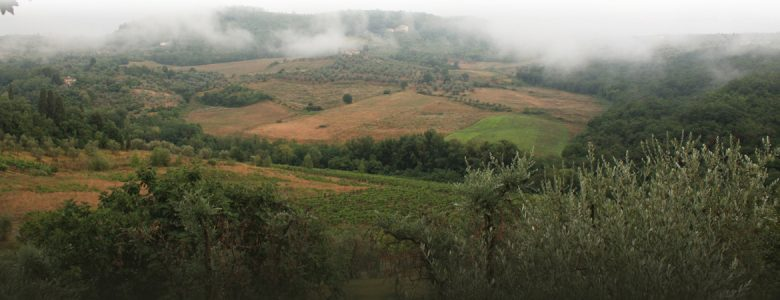 foto-1170x450-oude-site-mist